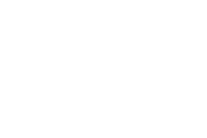 Solvation Germany